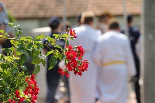 corpus christi feast  little red roses  altar servers