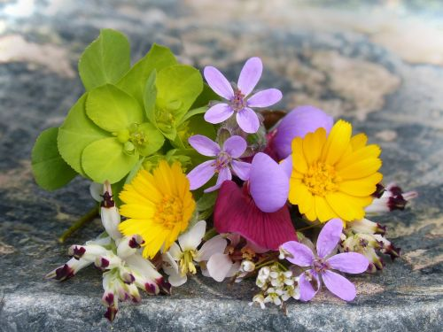 corsage wild flowers small