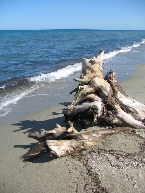 corsica sea beach