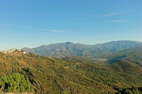 corsican mountain maquis