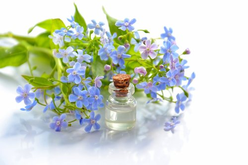 cosmetic oil  essential oil  cosmetology