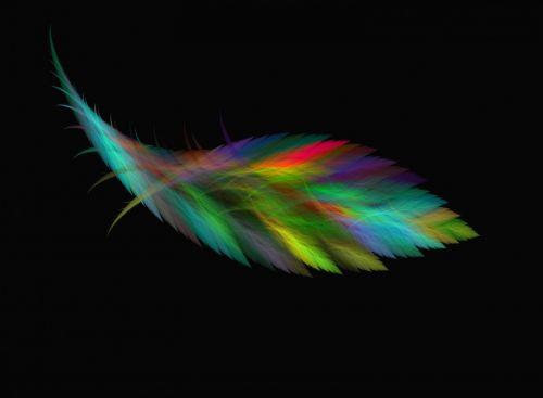Cosmic Bird Colorful Plumule