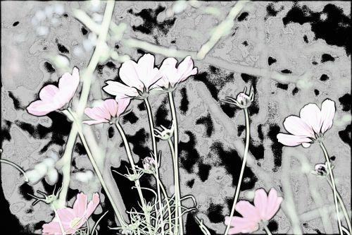 sodas, gėlės, kosmosas, piešimas, kosmosas sodo linijos brėžinyje