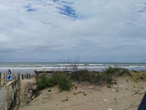 Atlantic Coast Arg 1