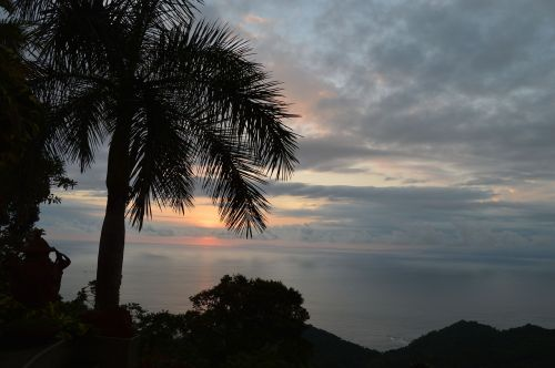 costa rica sunset beach palm trees