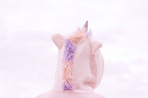costume  unicorn  sky