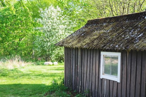 cottage,house,summer,window,grass,roof,nature,forest,sweden,green