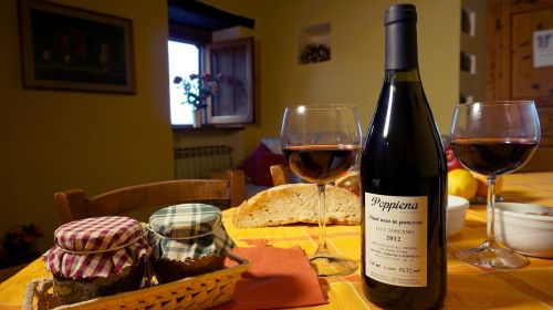 cottages-vacation rentals tuscany wine