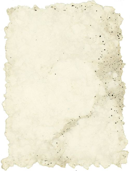 cotton handmade paper coffee