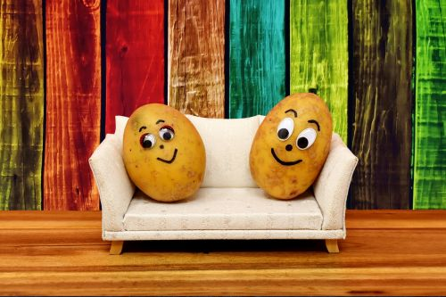 couch potatoes funny potatoes