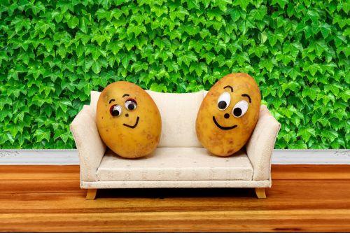 couch potatoes organic potatoes nature