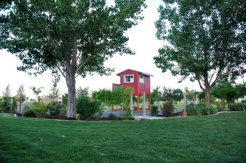 country life playhouse landscape