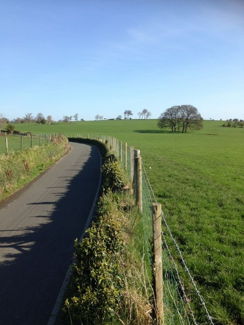 country road lane field