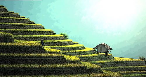šalies kiemas,ūkis,gamta,Žemdirbystė,vidaus,kaimas,kiemas,Šalis,natūralus,lauke,vasara,žalias,žolė,sodas,kiemas,ūkininkavimas,kaimas,komiksas