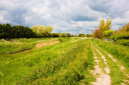 Countryside Trail, Sussex, England
