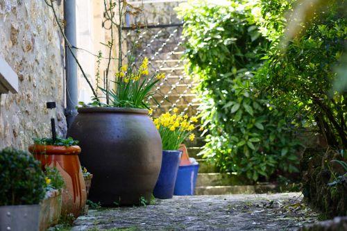 kiemo puodai,kiemo sodas,augalų puodai,šešėlis kiemas