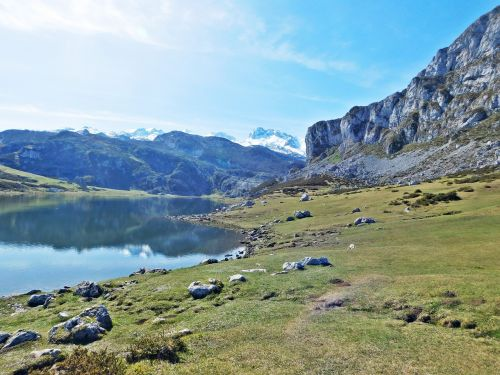 covadonga,ežeras,mon,Ispanija,asturias,picos,gamta,kelionė,europa,lauke,kraštovaizdis,vanduo,kalnas,piko,žolė,pieva,lagūnas,taikus,panorama,Europa