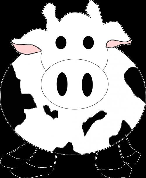 cow cattle milk