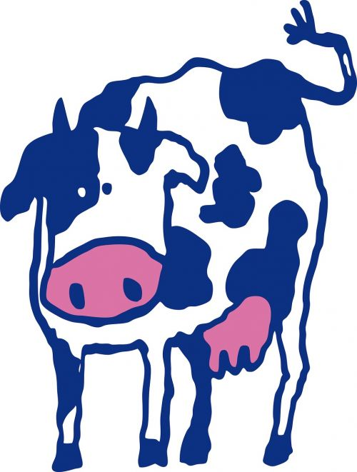 cow beef blue