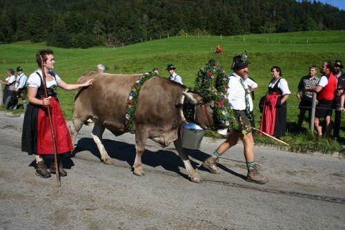 cow wreath beef allgäu
