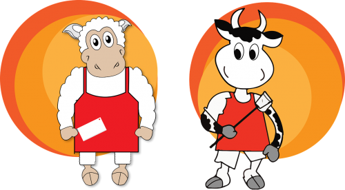 cow sheep chief
