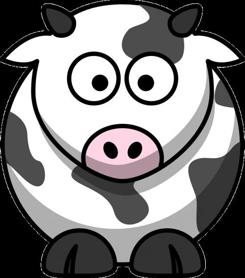 cow milk farming