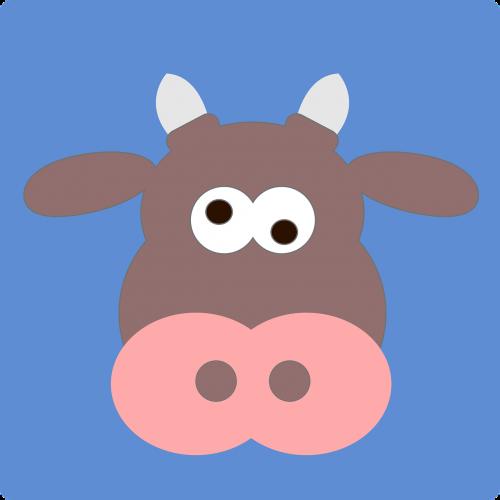 cow crazy animal