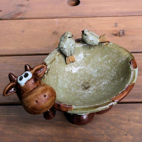 Cow Flower Pot