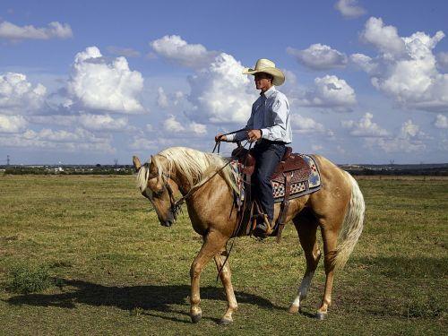 cowboy quarter horse trainer