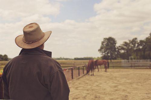 cowboy hat cowboy man