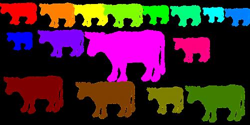 cows herd animals