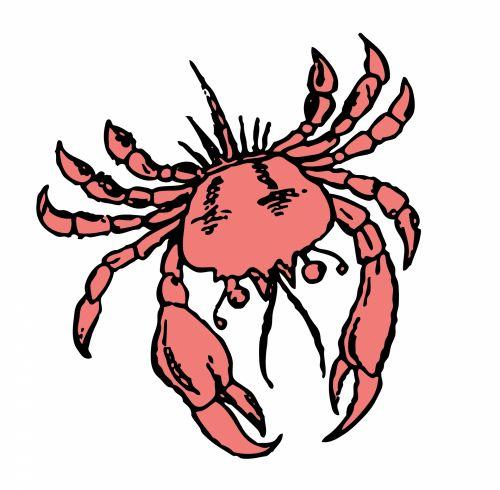 Crab Illustration Clipart