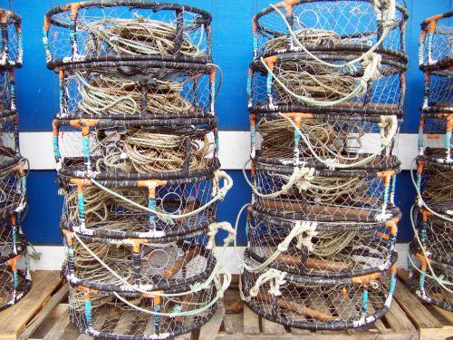 newport, oregonas, krabas, puodai, uostas, jūra, žvejyba, krabų puodai