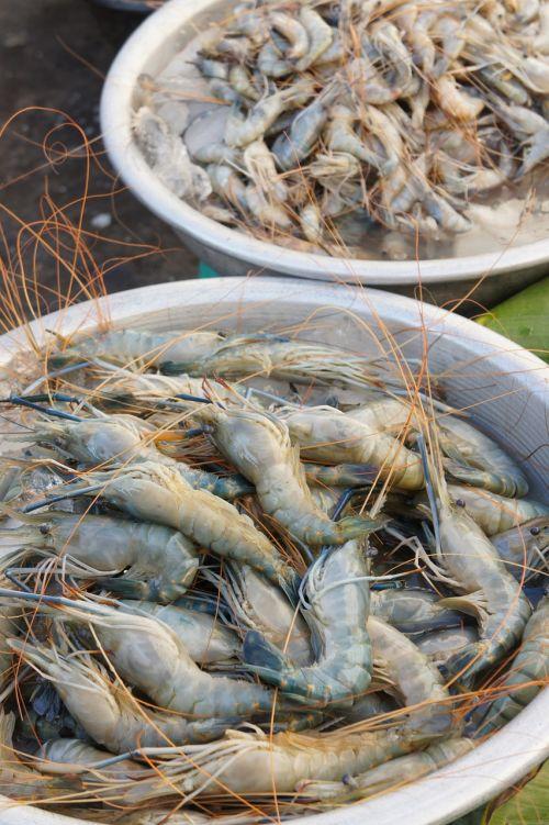 crabs market meat