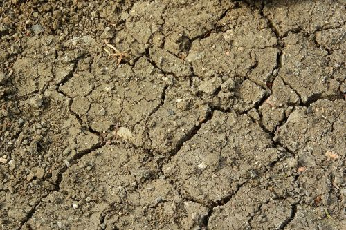 cracked earth drought dry soil