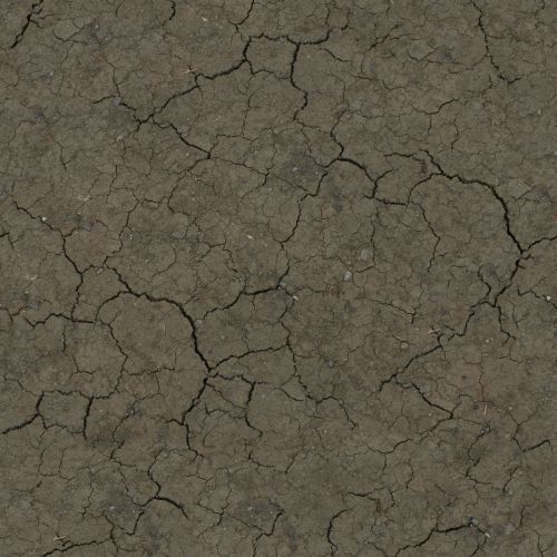 crackled ground earth