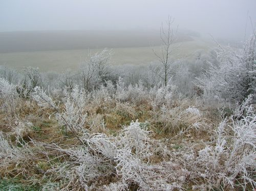 crags winter frost