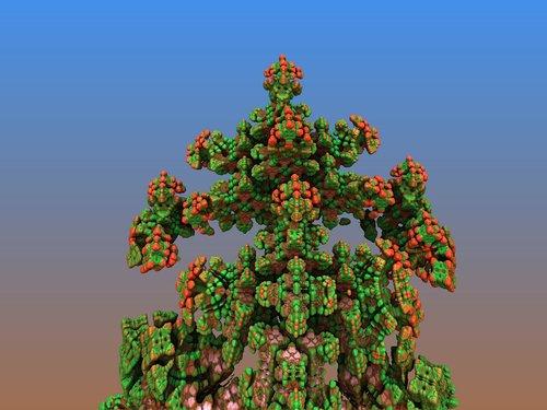 cranberry  molecules  fractal