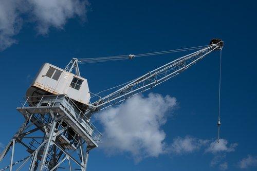 crane  sky  storchennest