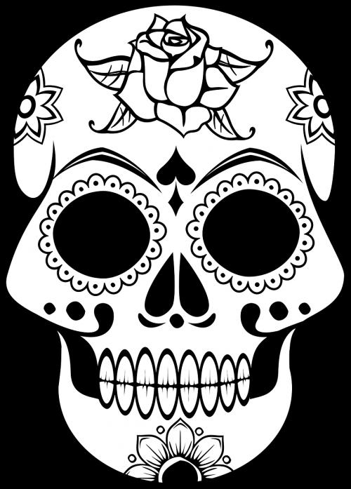 cranium decorative human
