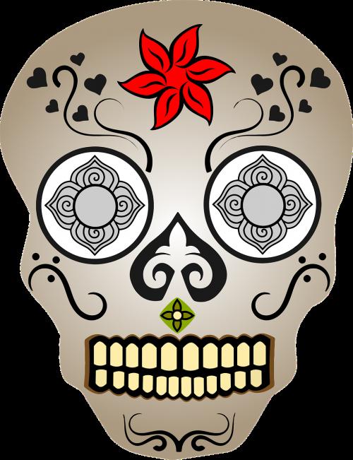 cranium decorative floral
