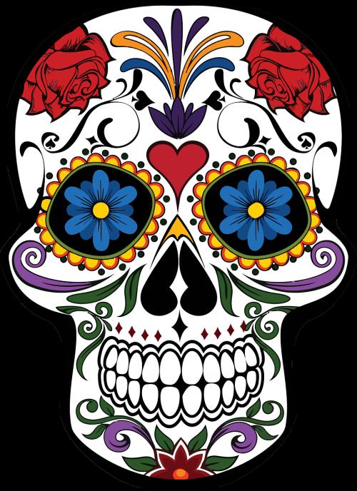 cranium decoration decorative