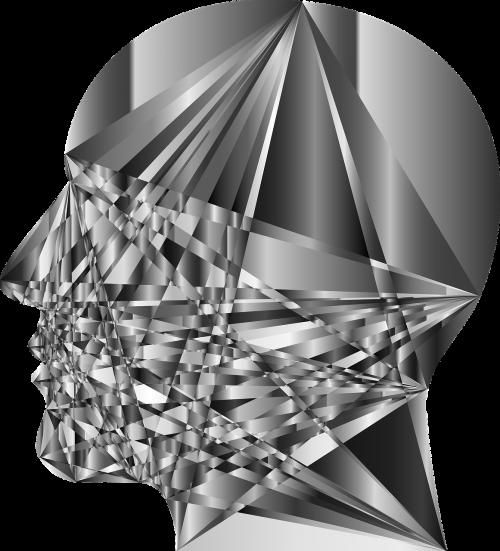 cranium head human