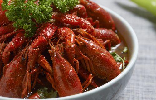 crayfish shooting gourmet