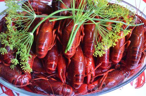 crayfish late summer crayfish party