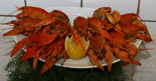 crayfish cooked seafood