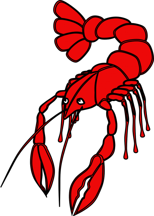 crayfish red lobster