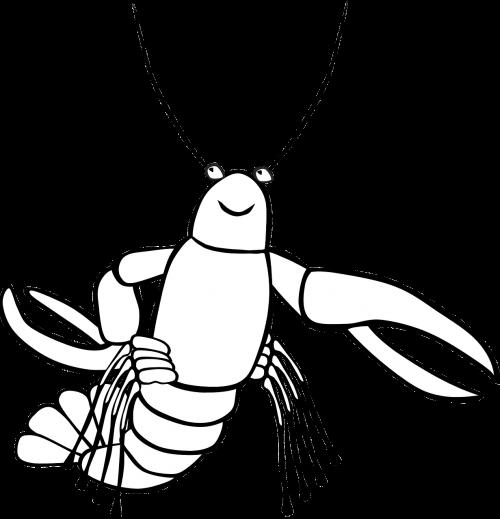 crayfish sea food
