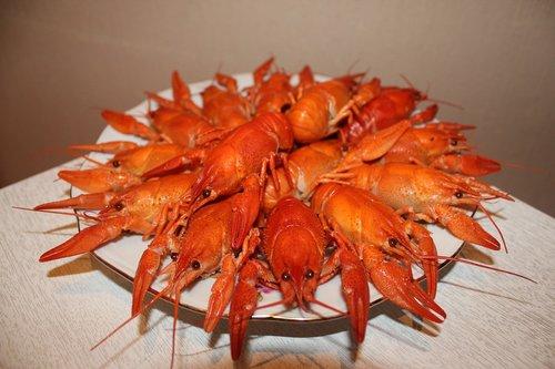 crayfish  boiled crawfish  red crayfish