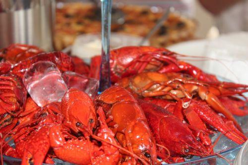 crayfish fest chills